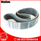 High Quality Cummins Engine Parts K19 Fan Belt 3002200