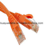 Patch Crod RJ45 CAT6/Computer Cable/ Data Cable/ Communication Cable/ Connector/ Audio Cable