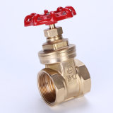 Light Type Brass Gate Valve for Water (Z168) DN20