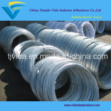 Electro Galvanized Binding Steel Wire with Best Prices