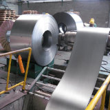Competitive Price Tinplate Steel Coil Manufacturer