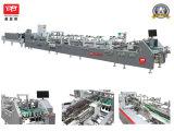 Yl-800PC Four or Six Corner Box Folding Machine