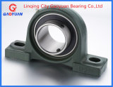Pillow Block Bearing Beairng (UCP208)