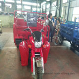 Farm Use 250cc Displacement Three Wheel Motorcycle with Cargo