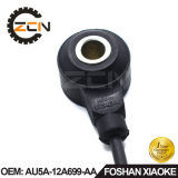 Au5a-12A699-AA Car Engine Knock Sensor with Connector for Ford