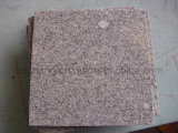 Polished Chinese G602 Grey Granite Tile for Paving Stone