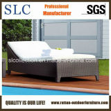 Wicker Outdoor Lounge/ Lounge (SC-B1078-3)