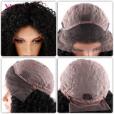 Wholesale Price 100% Brazilian Human Hair Lace Front Wig with High Density Malaysian Curly Wig