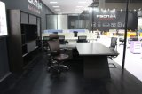Latest Design Premium Qualifty Cost Effective New-Tech Executive Desk