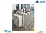 800kVA 10KV Oil-immersed Type Power transformer