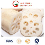 New Crop Frozen Sliced Lotus Root for Exporting and Frozen Vegetables