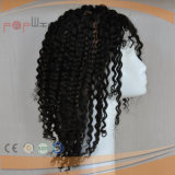 Cheap Price Afro Curly Human Hair Full Lace Wig (PPG-l-0332)