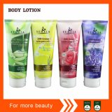 Middle East Popular Body Lotion in Tubes