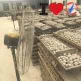 Don't Miss Dier Ceramic Inert Ball