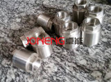 Thermostatic Sanitary Grade NPT Threading Steam Trap (JN-FL1001)