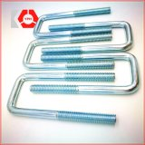 Stainless Steel L Bolt/ Anchor Bolt with Washers and Nuts