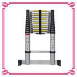 Euro Standard Folding Step Ladder