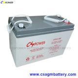 SMF Rechargeable Lead Acid Battery 12V100ah for UPS