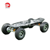 off Road 2600W High Quality Lead Acid Electric Powered Skateboard