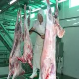 Ritual Lamb Meat Processing Equipment for Butcher Slaughterhouse