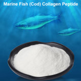 China Food Grade Fish Collagen Peptide Powder From Deep Sea Tilepia Cod