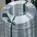AISI Stainless Steel Coil Pipe/Tube