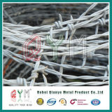 Razor Barbed Wire/Barbed Wire Price/Barbed Wire Coil Fencing Wholesale