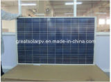Skillful Manufacture 180W Poly Solar Panel with Favorable Price From China