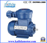 Yb3 Series Explosion-Proof Asynchronous Electric Motor