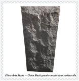 Chinese Absolute Black Granite for Mushroom Wall Tile