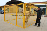 Welded Mesh Dog Kennel of Metal