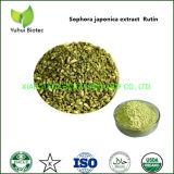 Organic Sophora Japonica Extract Rutin Supplement