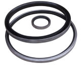 NBR/FKM Outer Skeleton Double Lips BS/Tb Type Oil Seals