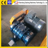 Dsr200g Electric Roots Air Blower Adapt to Petrochemical Equipment Price