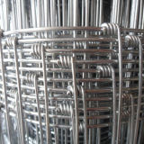 Cattle Fence of Hot DIP Galvanized, Export to South America