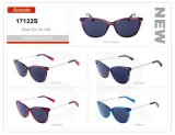 Fashion Style Wholesale Small Order Acetate Frame Sunglasses