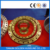 DIN Standard Stainless Steel Forged Flange
