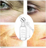 OEM/ODM Anti Wrinkle Treatment and Anti-Aging Whitening Serum