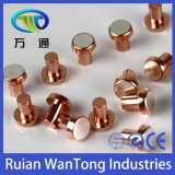 Silver Tin Oxide Contact Points