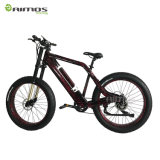 48V 1000W Fat Tire Electric Bicycle with Suspension Fork