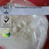 Top Quality Estrogen Progesterone Hormones Progesterone