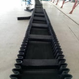 Side Wall Belt Conveyor Price for Chemical/Plastic Recycling Conveyor Belt