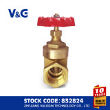 Female Thread and ISO228 Copper Brass Gate Valve (VG11.90011)