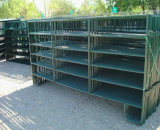 5FT*12FT USA Powder Coated Used Livestock Panels/Cattle Corral Panels