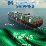Competitive Ocean & Sea Freight From China to Saudi Arabia/Dammam/Jeddah/Riyadh