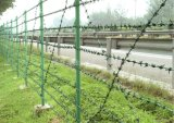 2mm *2mm Galvanized Barbed Wire Fencing with High Quality Lower Price