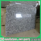 Colourful Natural Stone Granite for Flooring / Wall Tile