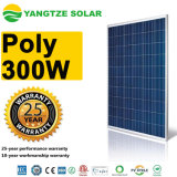 Yangtze Solar Panel Hot Sale Poly 300 W Tempered Glass 300W 60V