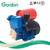 Electric Copper Wire Self-Priming Booster Pump with Booster Spare Part