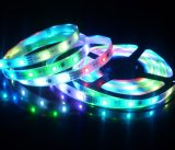 Outdoor LED Tape Lights Fast Delivery